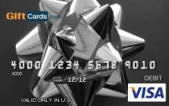 $25 Visa Gift Card - Shipped